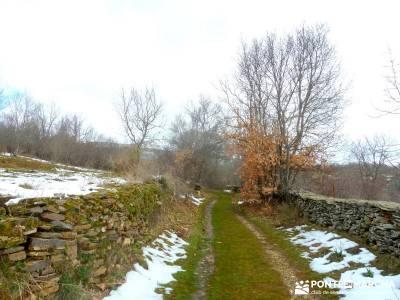 Hayedo Montejo; Reserva Biosfera Sierra Rincón; senderismo en madrid; viajes de senderismo